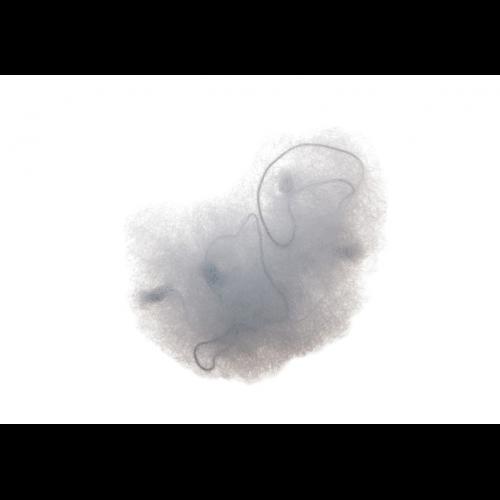 Сеточка Dewal для пучка, черная 2 шт/уп CE053